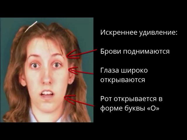 Психология эмоций Искреннее удивление Видео урок Online школы Ильи Анищенко