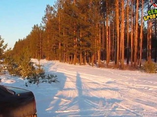 Семья Бровченко. Жизнь за кадром. Обычные будни + поездка в зимний лес. (часть 64)