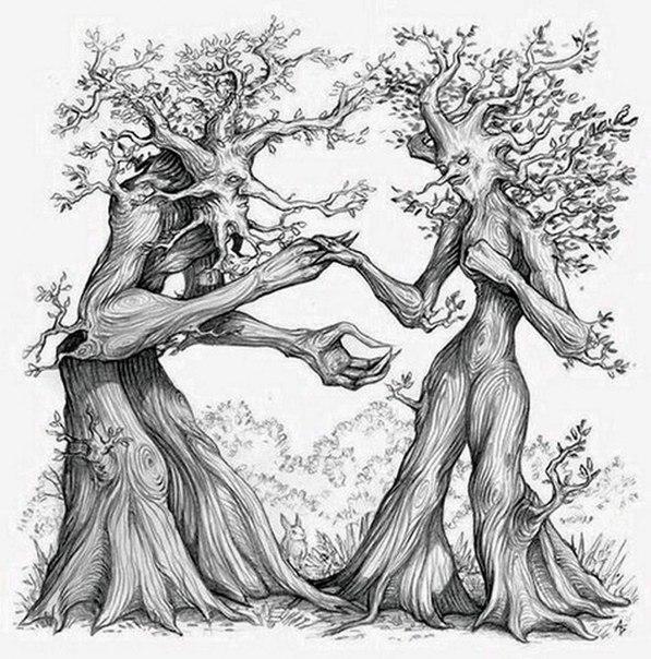оставить сказочное дерево рисунки карандашом вас собрали