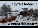 Крутые бобры 2 2 метра под килем Angry beavers 2 2 meters under the keel