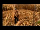 «Расследования Мердока» (2008 – ): Трейлер (сезон 1) / film/431247/