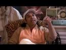 Awake the Amazing life of Paramahansa Yogananda autobiografy of Yogi Yoga Spiritual Christian