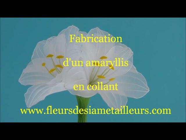 Fabrication dun amaryllis en collant How to make a nylon amaryllis