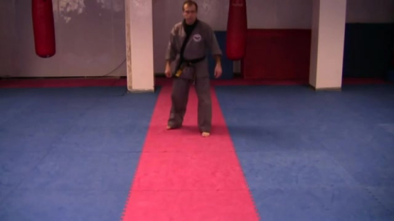 SPECIAL KOREAN SIN MOO KICKS BY GM MASSAN GHORBANI