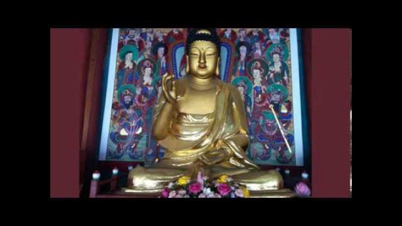 (better sound)나무아미타불 3시간, Amitabha Buddha(3h),Namo Amituofo,南無我彌陀佛,
