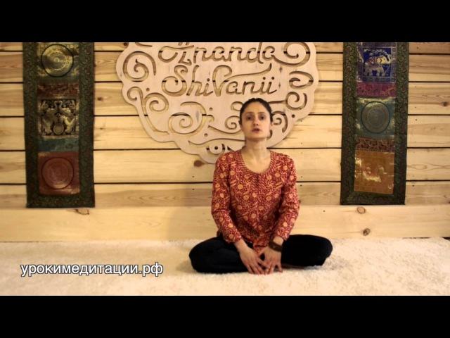 Йога для начинающих Обучающее видео № 2 Бхуджангасана Поза кобры