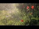 Почему идет дождь? Детям про дождь.