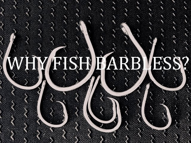 WHY FISH BARBLESS