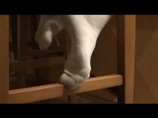 In white knee socks