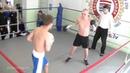 22 05 2015 Fight 8