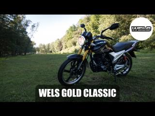 Wels gold classic