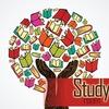 ЕГЭ и ОГЭ в Study Room | Саратов