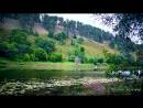 KRASIVOE_VIDEO Utro__zvuki_prirody__reka__staroe_ruslo__penie_ptits__relaks__priroda__meditatsiya