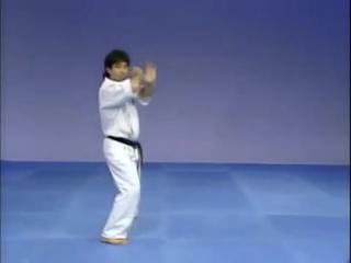 Каратэ Киокушинкай- Ката - Сайфа - Kyokushin Karate- Kata - Saifa (1)