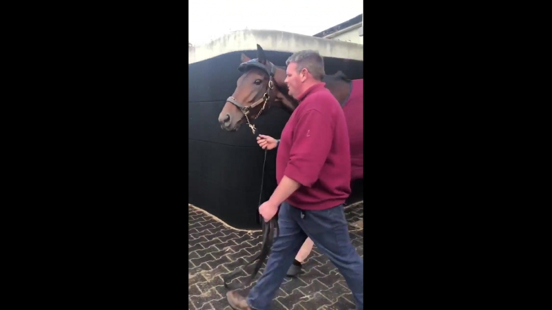 Mendelssohn leading the way on route to Kentucky KentuckyDerby
