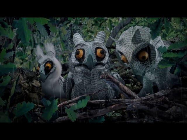 Long Eared Owl 2014 Длинноухая сова Здравствуй мир короткометражка