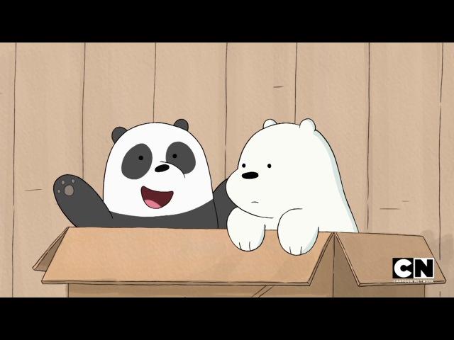 Мы Обычные Медведи We Bare Bears Сезон 3 Серия 12 BLACK SHOW