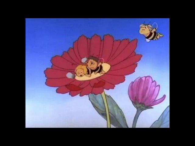 кто пчёлок уважает