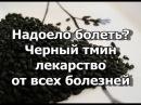 Надоело болеть Черный тмин лекарство от всех болезней