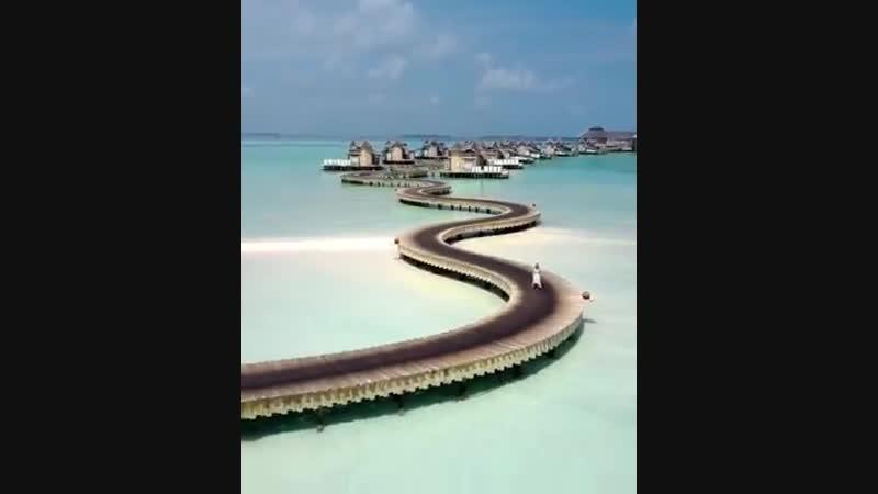 🐳🐙🐡🐠🐟🦀🦐🐚🦑 отпуски бывают разные Jani Resort In Maldives