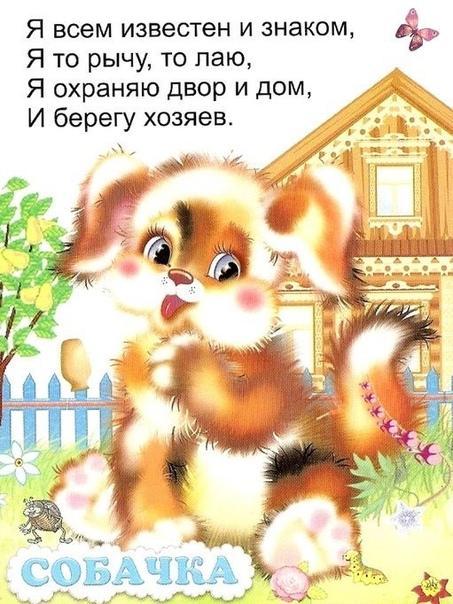 Загадки для малышей Знакомимся с животными