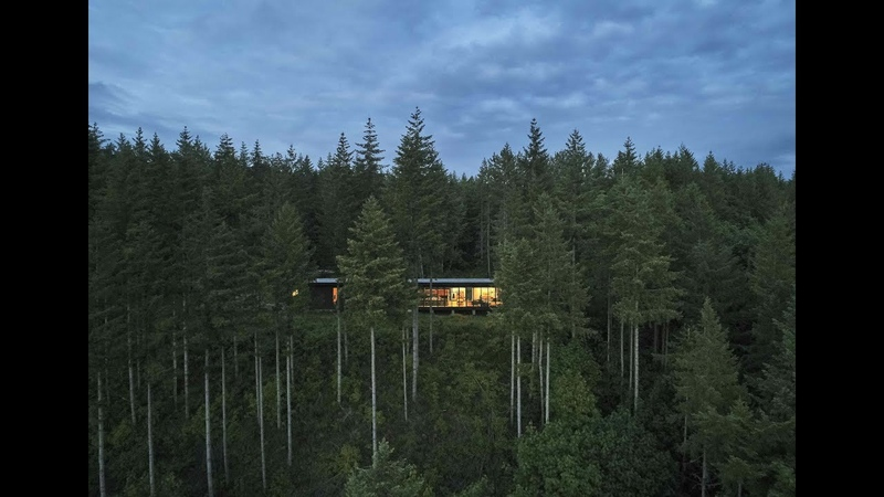 A Seattle-Area Family Breaks Free From Suburbia and Ventures Deep Into Nature
