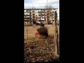 Бобруйск, 27 марта
