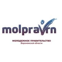 Логотип Молодежное правительство Воронежской области
