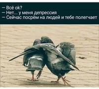 Алексей Синицын фотография #1