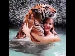 Хороший котик)