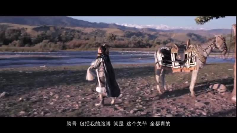 Племена и империи -- интервью Чжан Цзя Нин