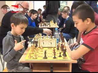 Шахматные сражения за кубок прокурора