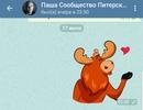 Алексей Кузнецов фотография #2