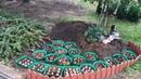 Моя любимая дача 29.09.19 г. Сажаю тюльпаны. Побелили деревья. Подготовка дачи к зиме.❤️