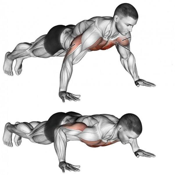 упражнения на полу с картинками измельчить состояния крошки