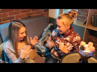 Loft lounge bar girls games