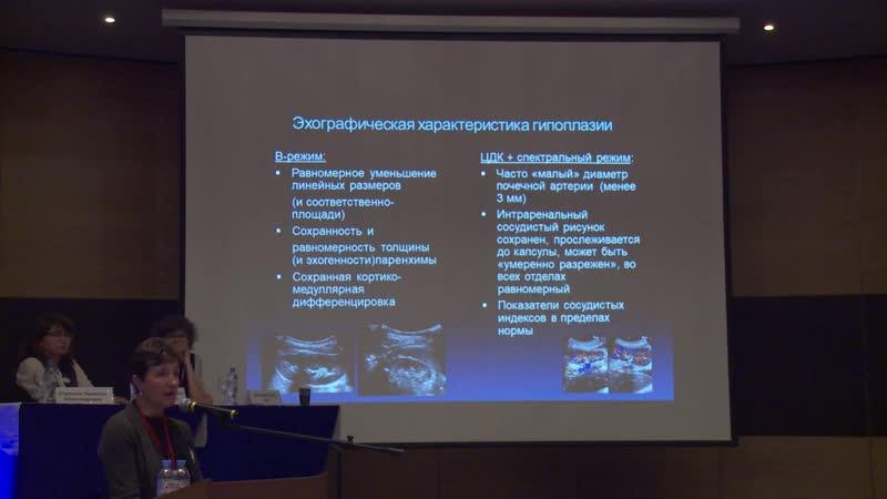 Румянцева И.В. — Стандартизация ультразвукового исследования при синдроме «малой почки» у детей