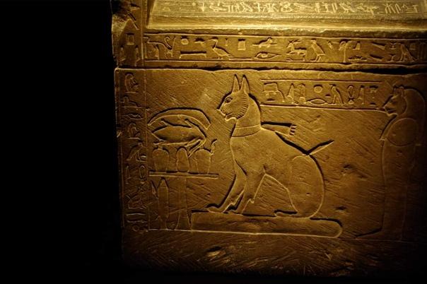 Кошка царевича Тутмеса по имени Та-миу и ее саркофаг, хранящийся в Египетском музее в Каире (14-й век до н.э.) Тутмес был старшим сыном фараона Аменхотепа III и наследным принцем. Мы знаем об