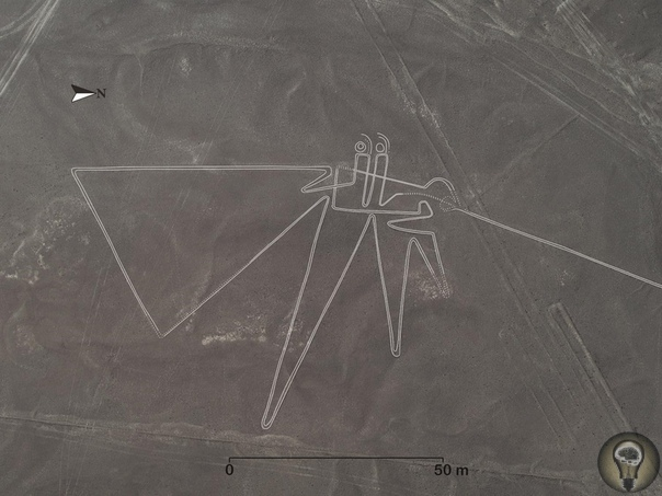 Новые геоглифы плато Наска. Исследователи из университета Ямагата (Япония) обнаружили на плато Наска в южном Перу 143 новых геоглифа, на которых изображены животные и другие существа, а также