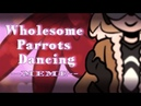 BNHA Wholesome Parrots Dancing MEME