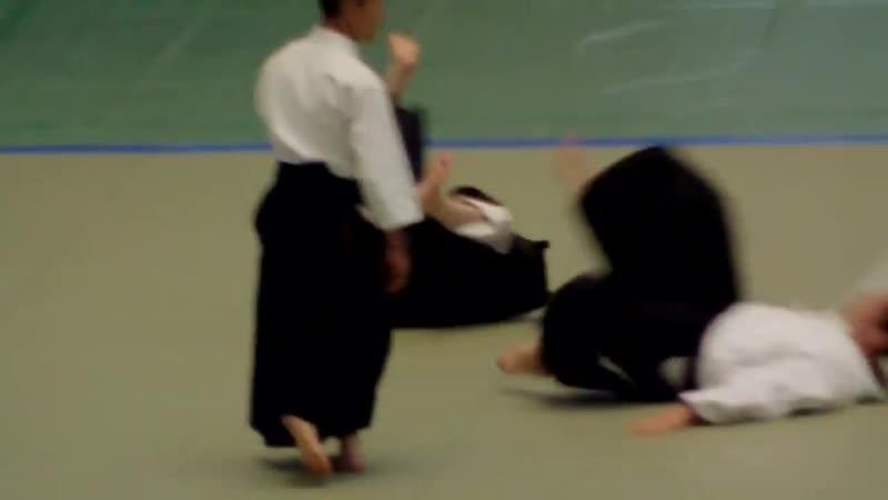 51st All Japan Aikido Demonstration Takeda Shihan
