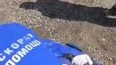 Полиция в Подмосковье избила активистов, протестующих против строительства комплекса по переработке отходов возле города Ликино-Дулево мужчине сломали руку, девушке сломали ногу. Женщина упала без сознания с сердечным приступом.