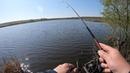 КАРАСЬ на спиннинг!?)) ЛЕГКО Лайтовая, карасёво - окунёвая рыбалка на запруде ранним утром!