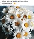 Личный фотоальбом Екатерины Казанской