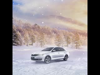 Škoda rapid sales out
