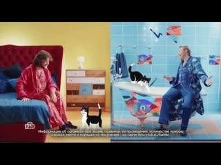Николай Басков и Филипп Киркоров в рекламе корма Феликс