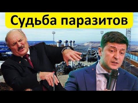 🔥 СУДЬБА ПАРАЗИТОВ: Украина, Белоруссия и Болгария хотят работать в «Турецком потоке»