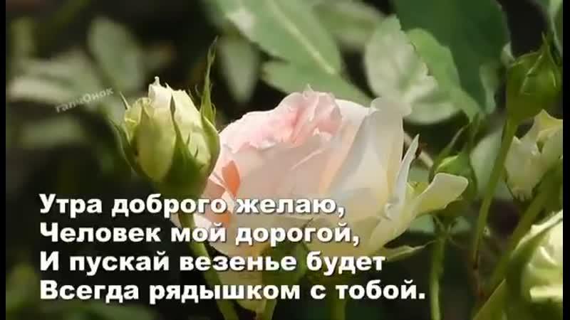 VIDEO 2019 09 04 06 54