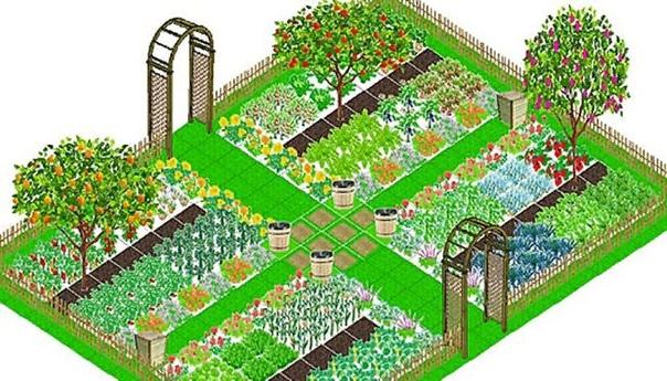 Планировка огорода. 6 главных принципов
