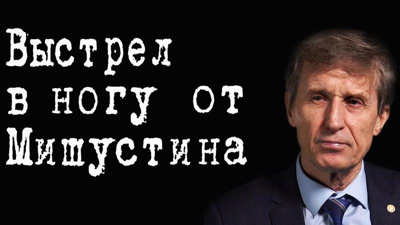 Выстрел в ногу от Мишустина ВасилийМельниченко